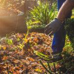 garden cleanup perth
